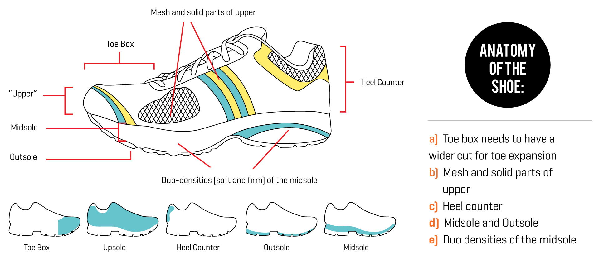 Type Of Running Shoes For You